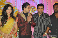 Celebraties at Actor Bharat n Jessy Wedding Reception Photos+%2528107%2529 Actor Bharath n Jessy Wedding Photos