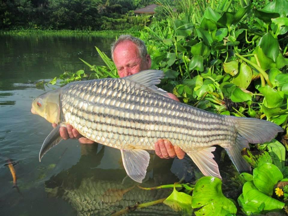 Pescaria De Dicas O Pesqueiro Dos Pesqueiros