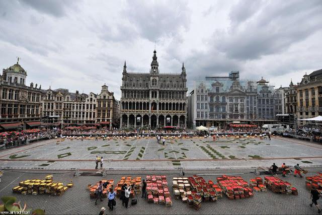 مهرجان بروكسل للزهور 2012 513904276536.jpg