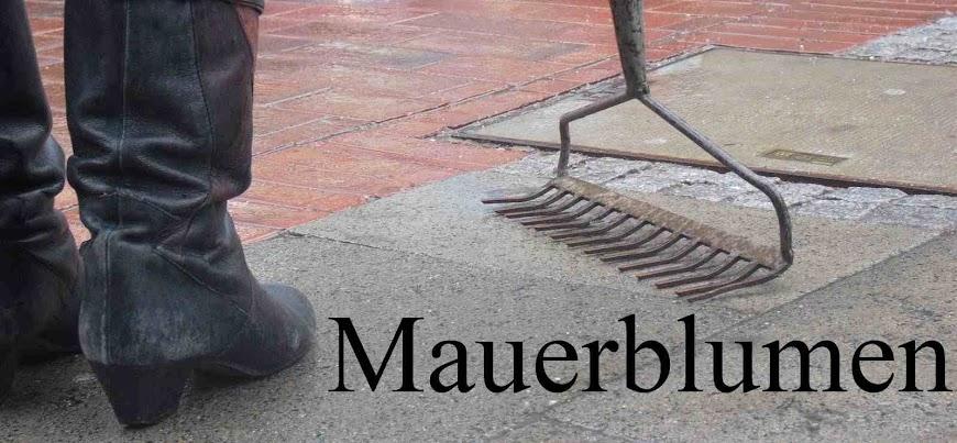<center>Mauerblumen</center>