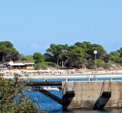 Ibiza en miscelánea-verano