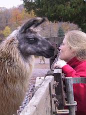 Love Your Inner Llama!