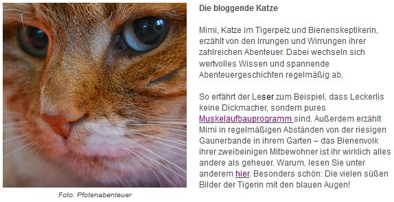 http://www.wayfair.de/tipps-und-ideen/Blogger-Highlights-Vier-flauschige-Pfotenblogs-E9604