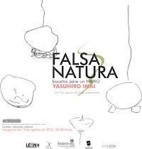 Falsa Natura, Bocetos para un haikú. Yasuhiro Imai .