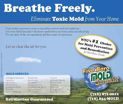 NYC indoor air quality services
