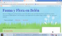 Fauna y Flora en Belén