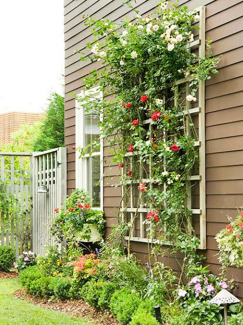 plantas forrageiras jardim:Depósito Santa Mariah: O Que Fazer Com Corredores Laterais?