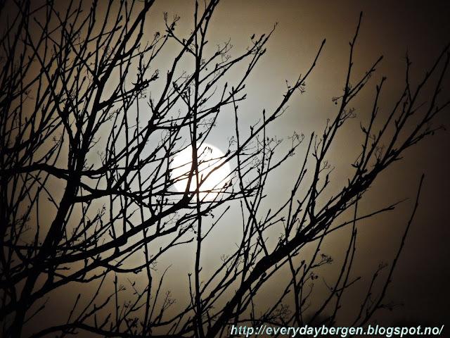 Bergen Moon