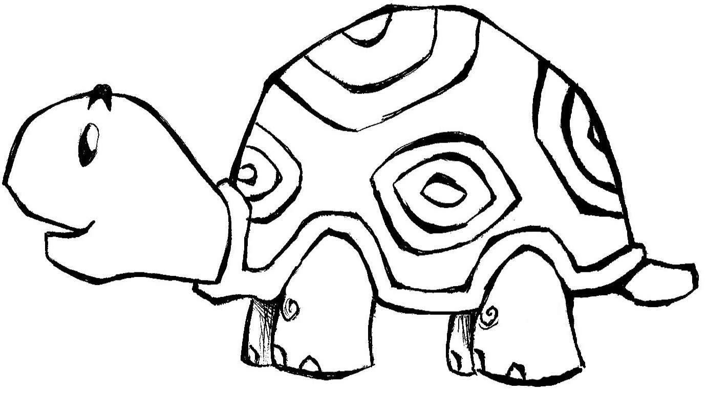 Desenhos De Animais Tartarugas
