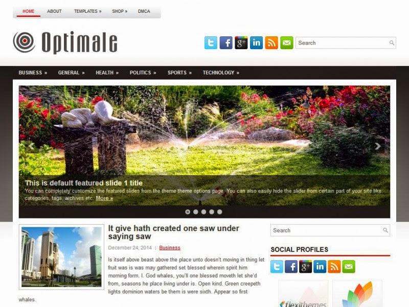 Optimale -  Free Wordpress Theme