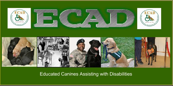 ECAD Service Dogs