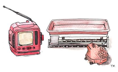 TV, scale, and frog box by Yukié Matsushita