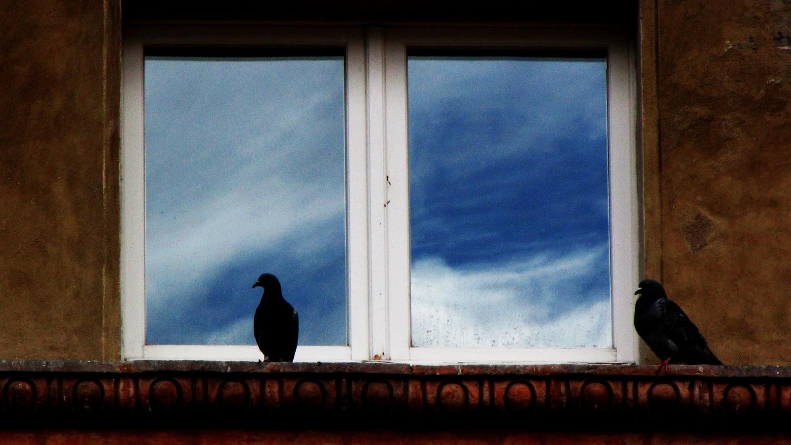 Finestre aperte inside passage - Antifurto finestre aperte ...
