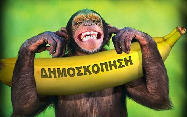 Προσοχή, Προσοχή! Κυκλοφορούν αποκριάτικες δημοσκοπήσεις - Μαϊμούδες!