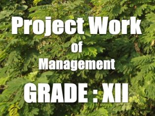 Explanation for Chapter 1 Introduction To Project Management Scribd