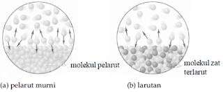 tekanan uap larutan