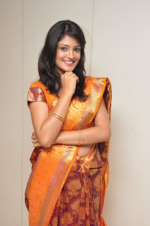 Model krupali in silk saree at cmr ashadam event 005.jpg