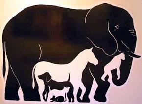 Скольких животных вы видите?