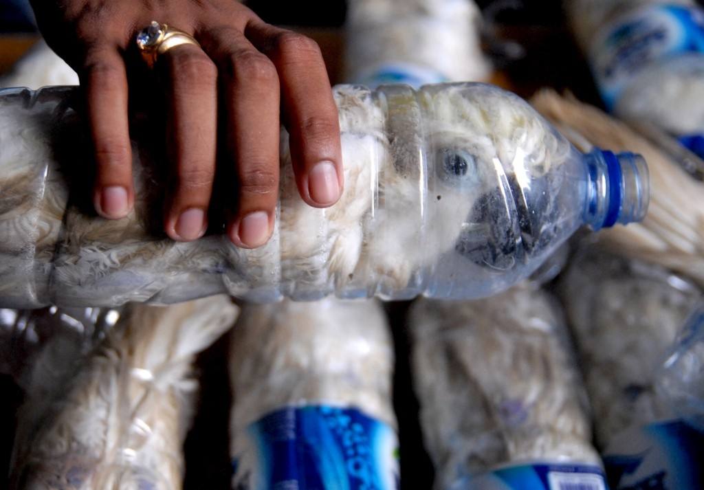 70 Of The Most Touching Photos Taken In 2015 - A policeman holds a water bottle with a yellow-crested cockatoo squished inside for illegal trade in Surabaya, Indonesia.