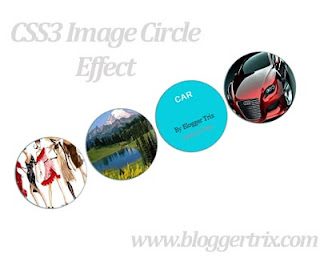 Awesome+CSS3+Image+Circle+Hover+Effect