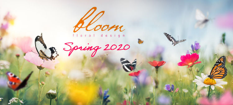 bloom floral design