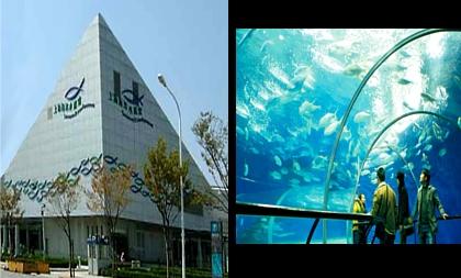 public aquarium located in Shanghai, this impressive institution ...