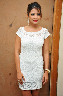 Actress Adonica New Pictures in Short Dress at Romeo Movie Audio Launch  11.JPG