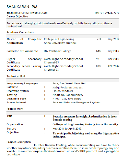 professional resume format for freshers. Resume Example. Resume CV Cover Letter