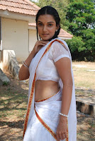 Honey, Rose, In, White, Saree