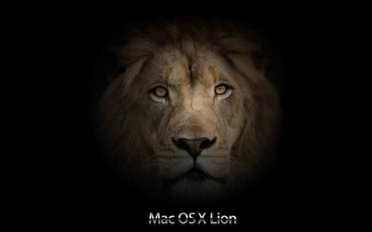 Hd Wallpapers Blog: Mac Lion Desktop Poppies