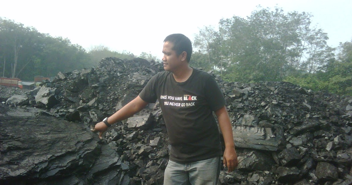 Coal Trading Adalah