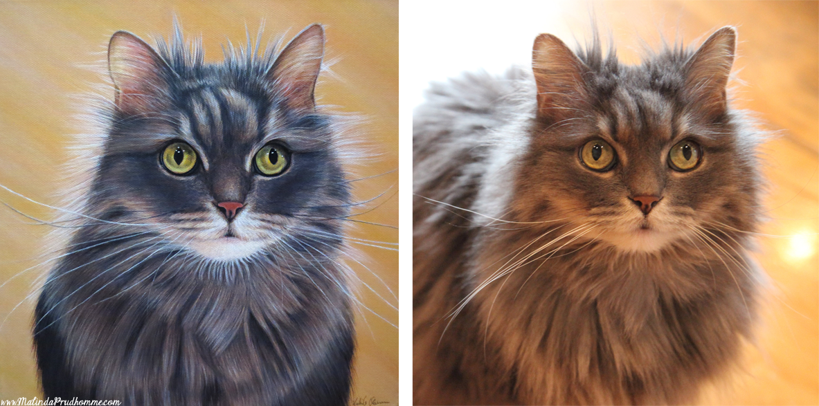 cat portrait, pet portrait, cat painting, pet painting, custom cat portrait, custom portrait, custom pet portrait, toronto artist, portrait painting, malinda prudhomme, grigia, grey cat, cat eyes