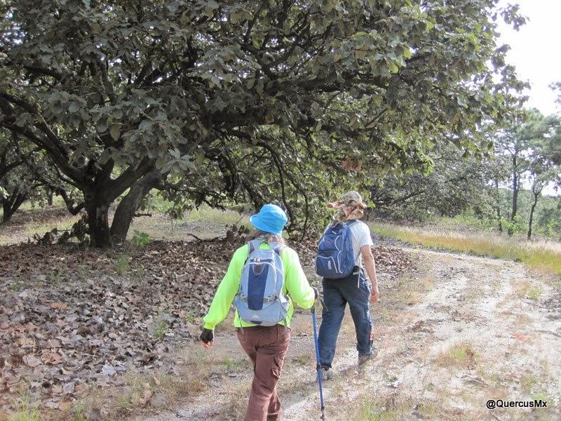 Caminando en la brecha del Cerro San Miguel