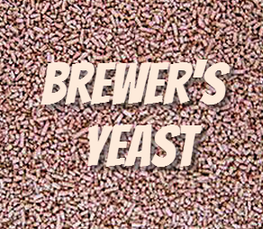 Brewer`s yeast