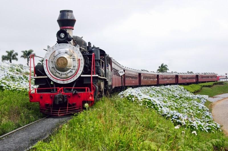 Resultado de imagem para ferrovia do vinho fotos