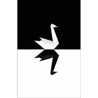 nassim nicholas taleb the black swan