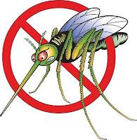 Cara Mengusir Nyamuk Dengan Aplikasi HP [Download Software]