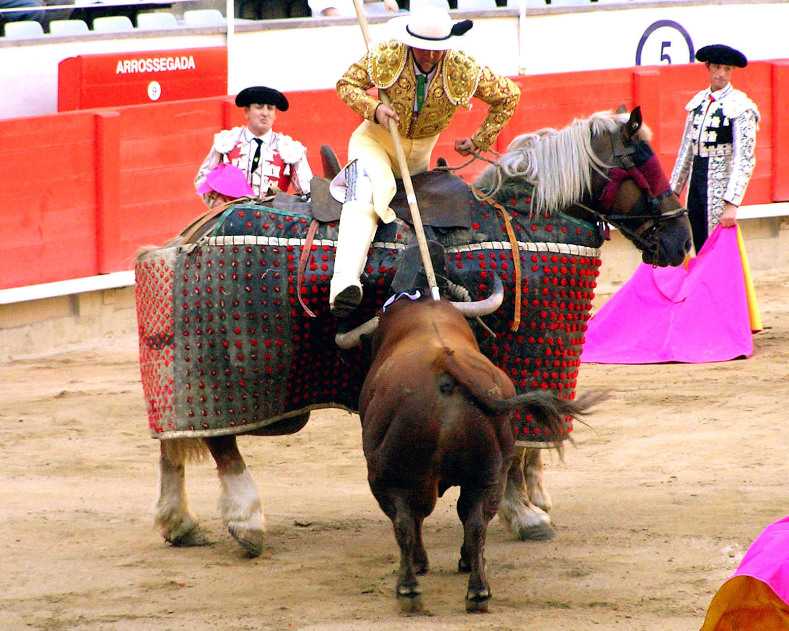 bull fighting Bullfighters only is a platform created to revolutionize the sport of american bullfighting.