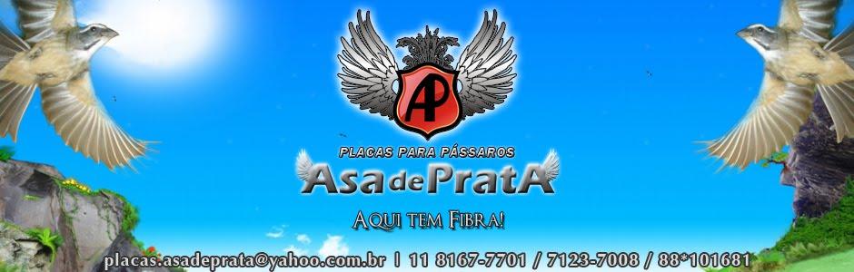 ASA DE PRATA - Aqui tem Fibra!
