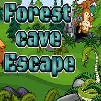 Ena Forest Cave Escape Walkthrough