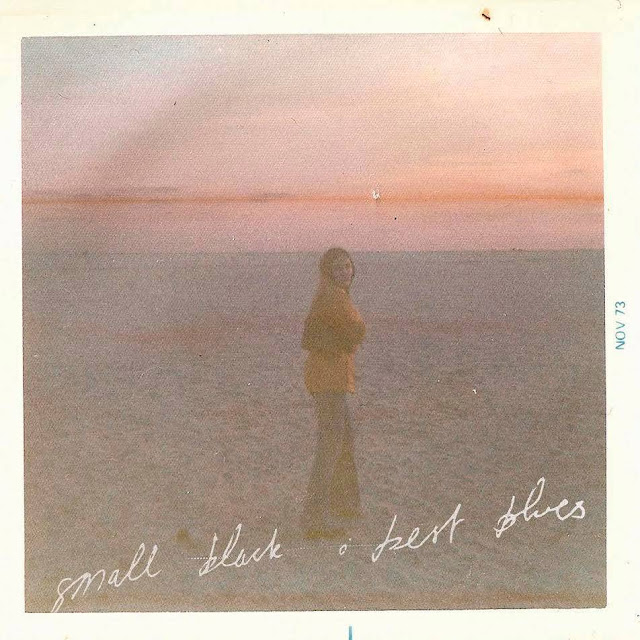 small-black-album-cover-best-blues