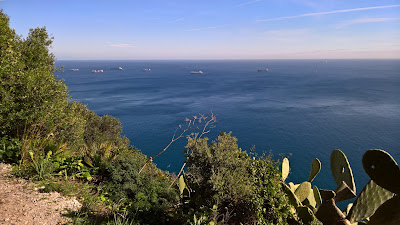 View from the Mediterranean Steps east toward Alboran Sea