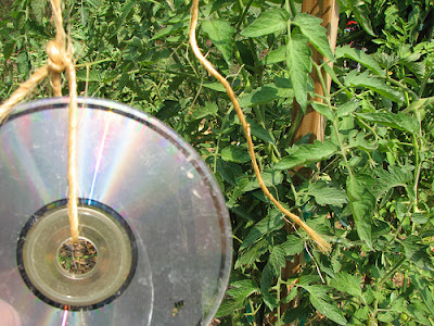 Old CD's in Your Garden