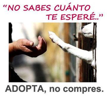 NO ROMPAS LA CADENA!!!