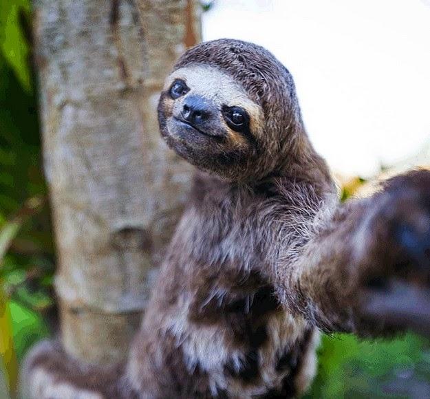 embarrassing-selfies-1