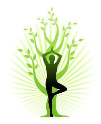 Curso Superior de Yoga