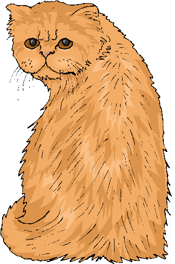Funny Yellow Cat Free Animal Clipart