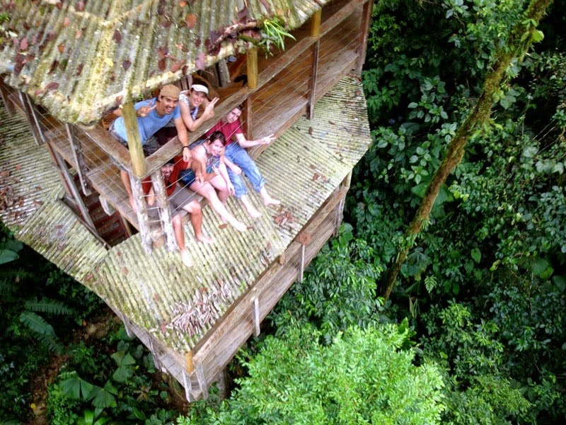 Your childhood dreams will be re awakened when you see for Tree house for sale costa rica