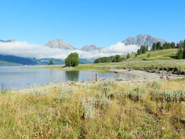 Landscape and Nature Photos from Grand Teton National Park: Grow Creative