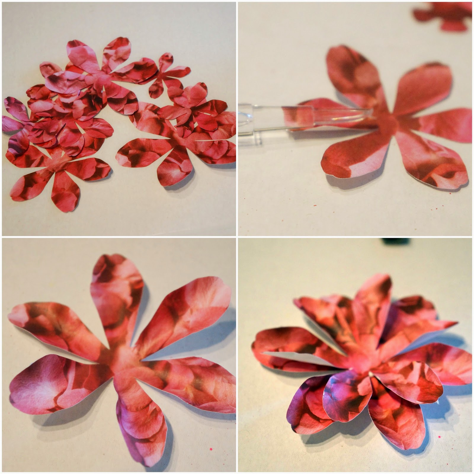 Snaps of Ginger DIY Paper Flowers